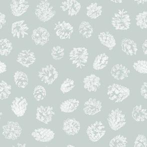 pine cones on ice grey