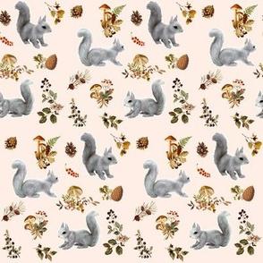 Squirrel Silver Grey on Subtle Blush