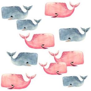 Whale Pod!