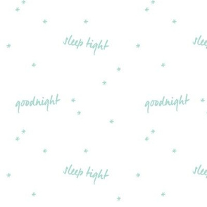 Goodnight Sleep Tight // Mint