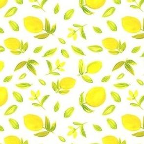 Lemon, spanish lemon