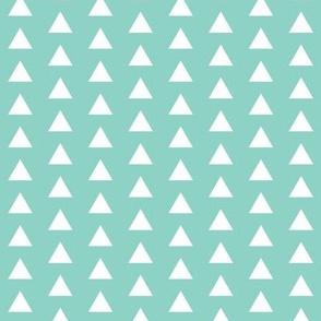 Triangle Aqua