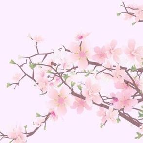 bloomingtree