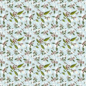 Botanical Jasmine flower