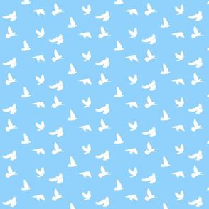 Doves in Flight, Sky Blue