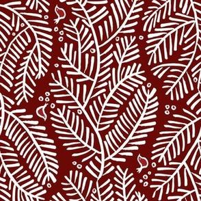 arborvitae - border red