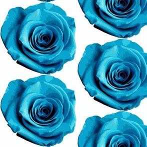 light_blue_rose