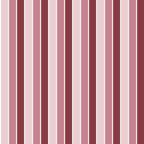 Ballet Simple Stripes (Spring)