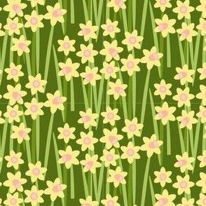 Daffodil Crowds