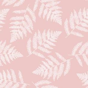 white ferns on hyacinth pink