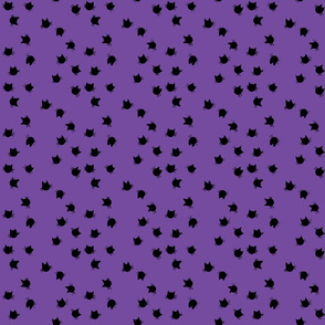 scatter_cats_purple