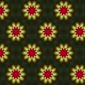 Flower Starburst