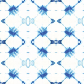 SPIDER WEB BLUE