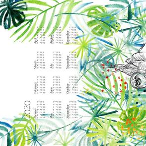2020 Calendar: Rainforest Sloth - © Lucinda Wei