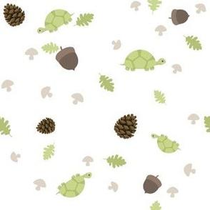 Turtles Wander with Acorns