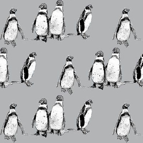 penguins grey