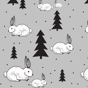 rabbit in snow - elvelyckan