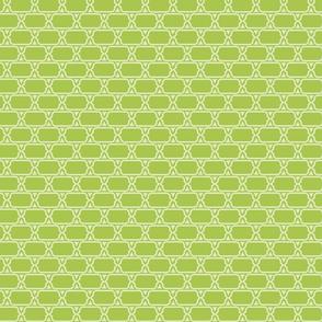 Fun Floral Coordinates_Green Geometric Chain