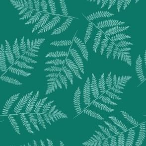 ferns in spruce blue