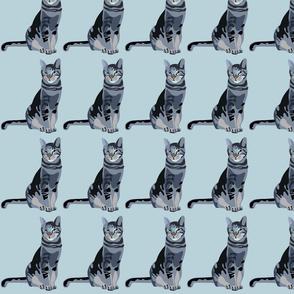 cat-vector