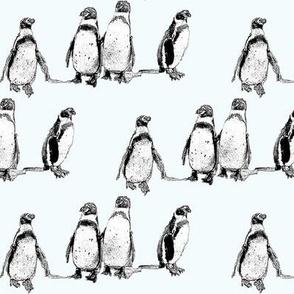 penguins ice