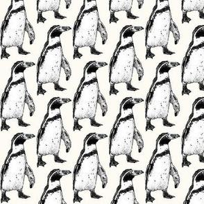 penguin powder