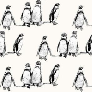 penguins powder