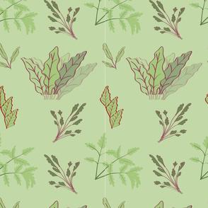 Root Vegetable Leaves