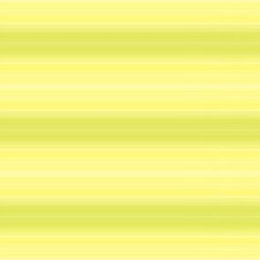 yg_lined_stripes