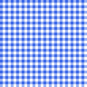"1/4"" fisherman's gingham - bright blue"
