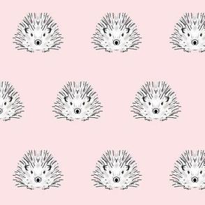 hedgehog pink