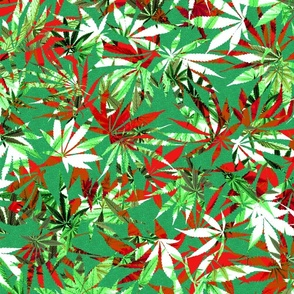 Cannabis Red/Green/White/Black Leaf Chaos