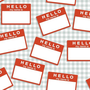 hello my name is...   (in red on grey gingham)