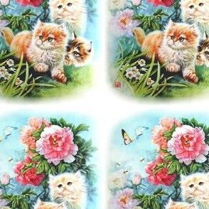 cats kittens pussy butterflies butterfly bees flowers mudan peony flowers grass garden