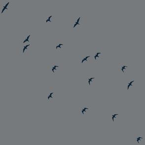 Navy_Birds_-_grey