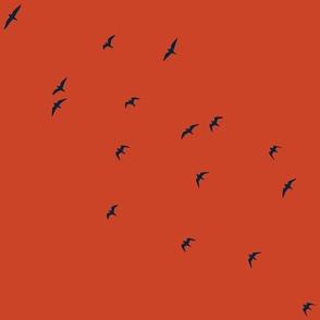 Navy_Birds_-_orange