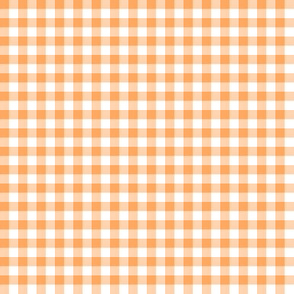 fisherman's gingham - sun-faded orange