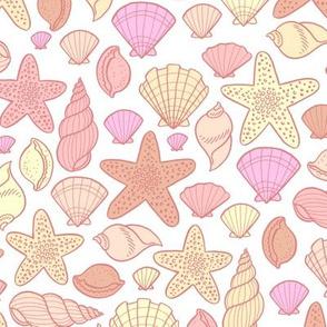 seashells - warm