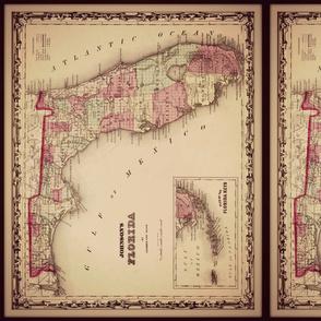 Florida vintage map, small