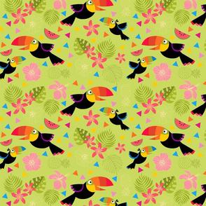 TOUCAN birds on green