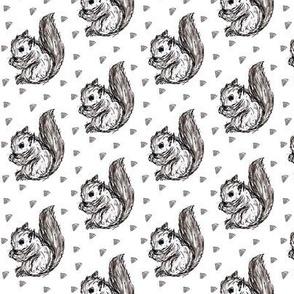 mini squirrel white