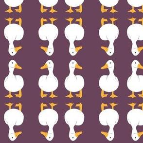 ducks_on_purple