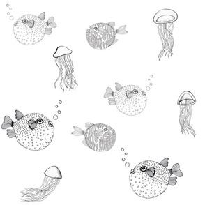 Jellyfish and Pufferfish on White