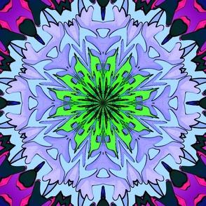 chrysanthemum_a