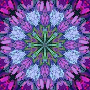 chrysanthemum_c