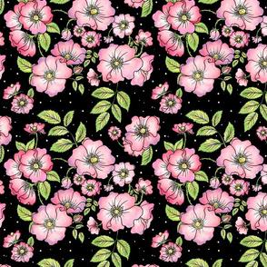 Dog Roses (Full Color)