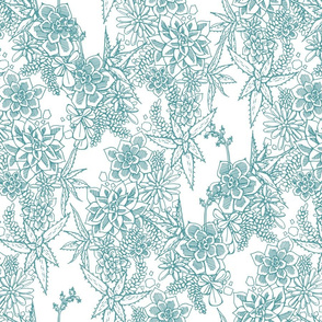 SUCCULENT - toile - teal + white