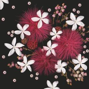 Big Bang Bloom!