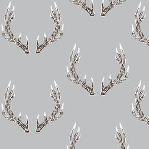 elk antlers grey