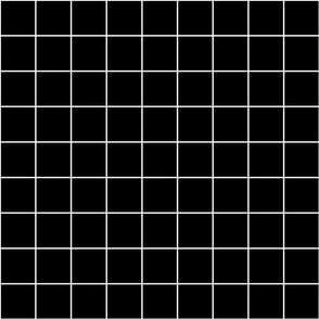 White and Black Windowpane Check